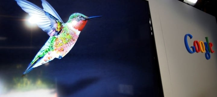 Google Humminbird algorithm